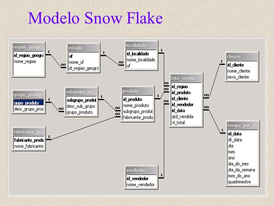 Modelo Snow Flake