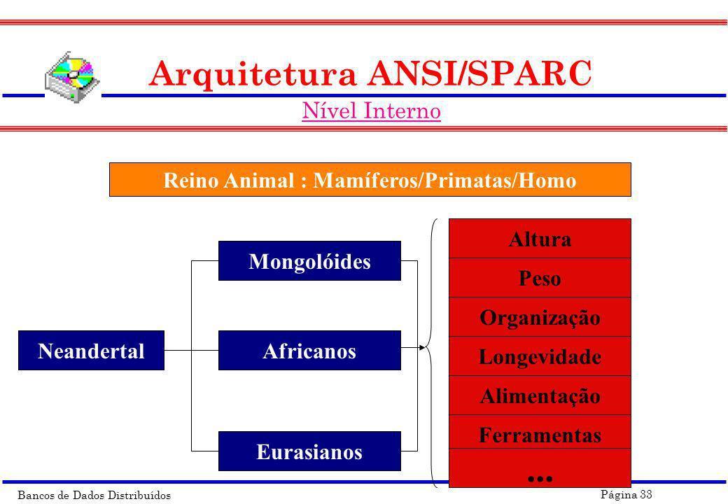 Reino Animal : Mamíferos/Primatas/Homo