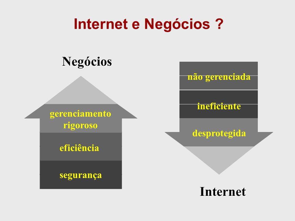 Internet e Negócios Negócios Internet não gerenciada ineficiente