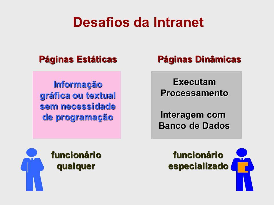 Informação gráfica ou textual sem necessidade de programação