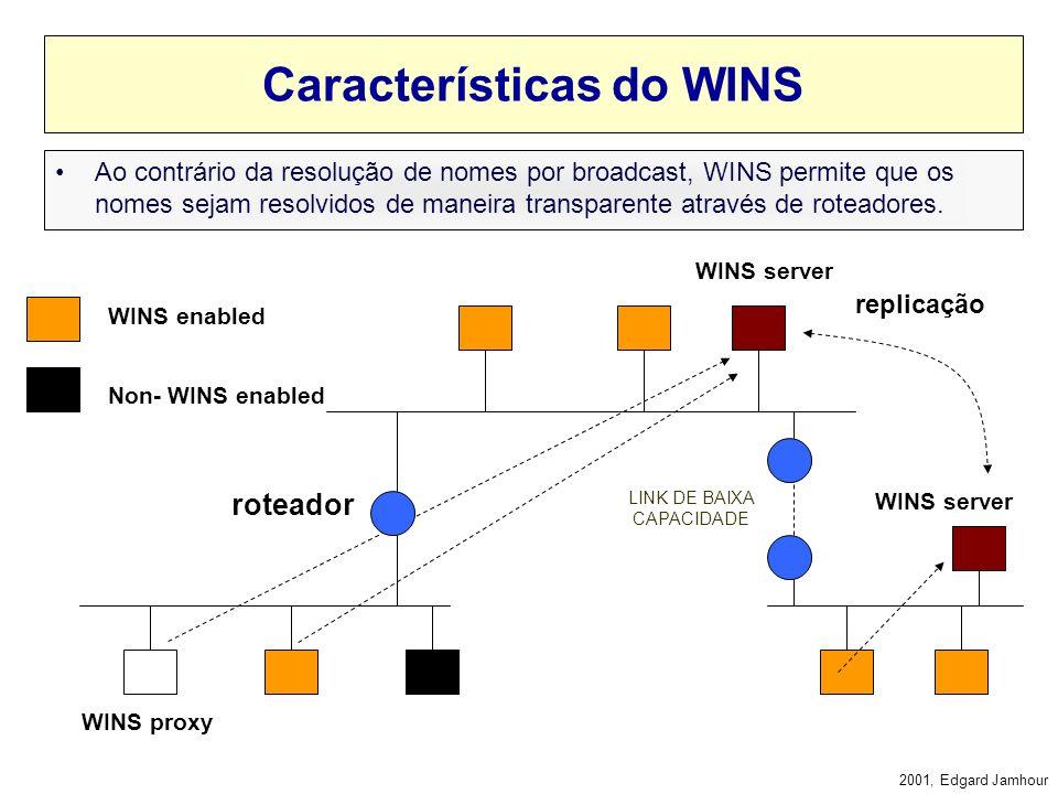 Características do WINS