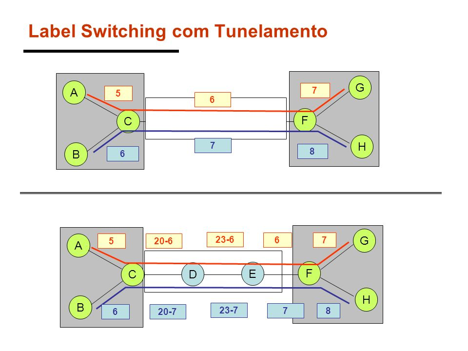 Label Switching com Tunelamento