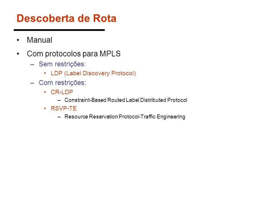Descoberta de Rota Manual Com protocolos para MPLS Sem restrições: