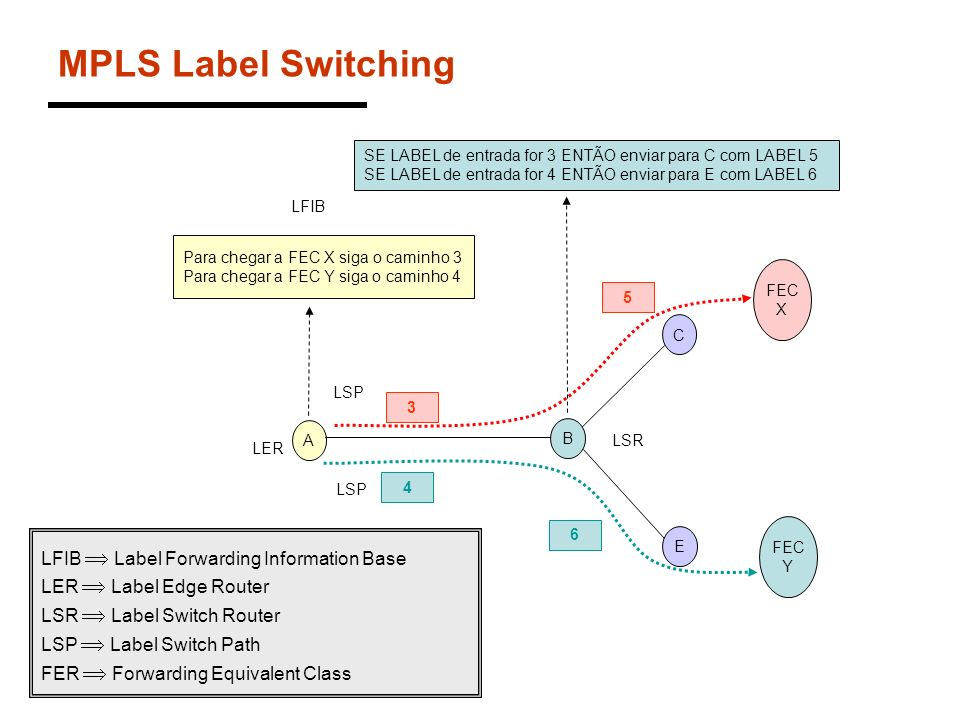MPLS Label Switching LFIB  Label Forwarding Information Base