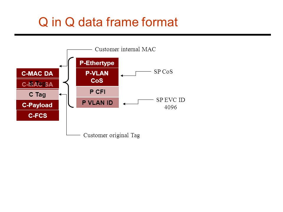Q in Q data frame format Customer internal MAC P-Ethertype SP CoS