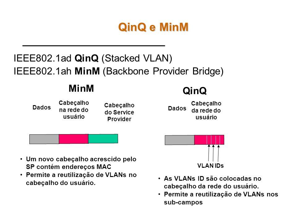 QinQ e MinM IEEE802.1ad QinQ (Stacked VLAN)