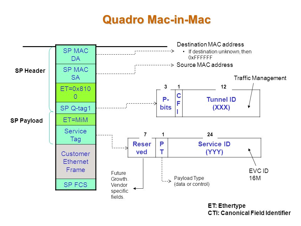 Quadro Mac-in-Mac SP MAC DA SP MAC SA ET=0x8100 SP Q-tag1 ET=MiM