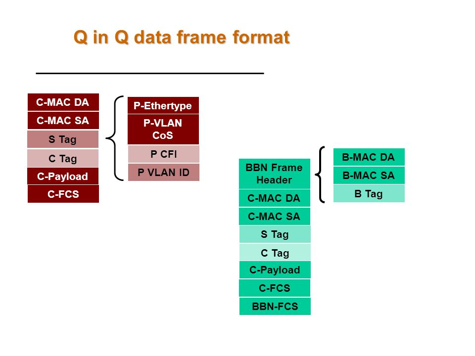 Q in Q data frame format C-MAC DA P-Ethertype C-MAC SA P-VLAN CoS