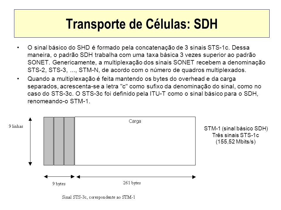 Transporte de Células: SDH