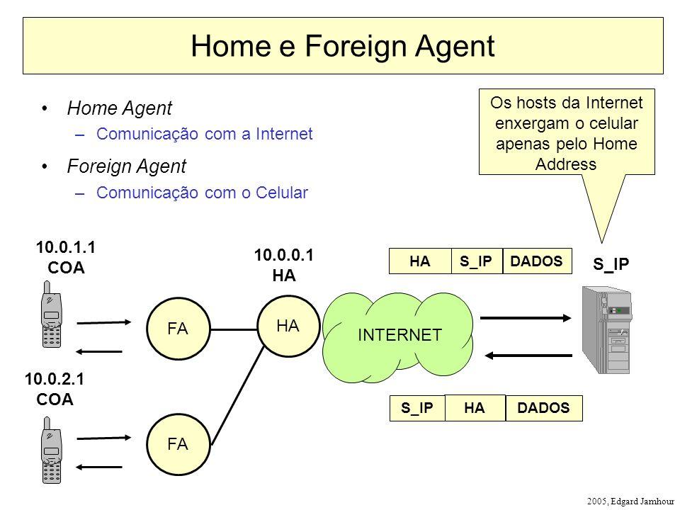 Os hosts da Internet enxergam o celular apenas pelo Home Address