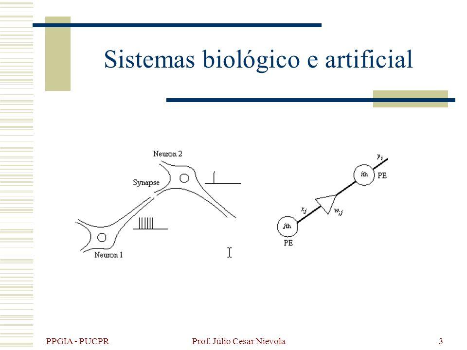 Sistemas biológico e artificial