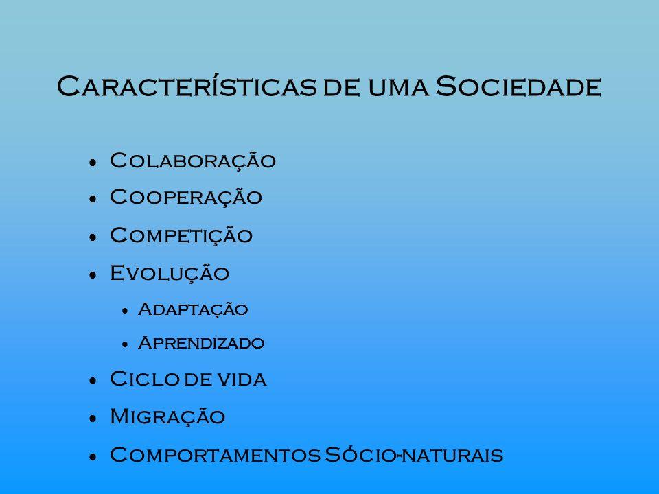 Características de uma Sociedade