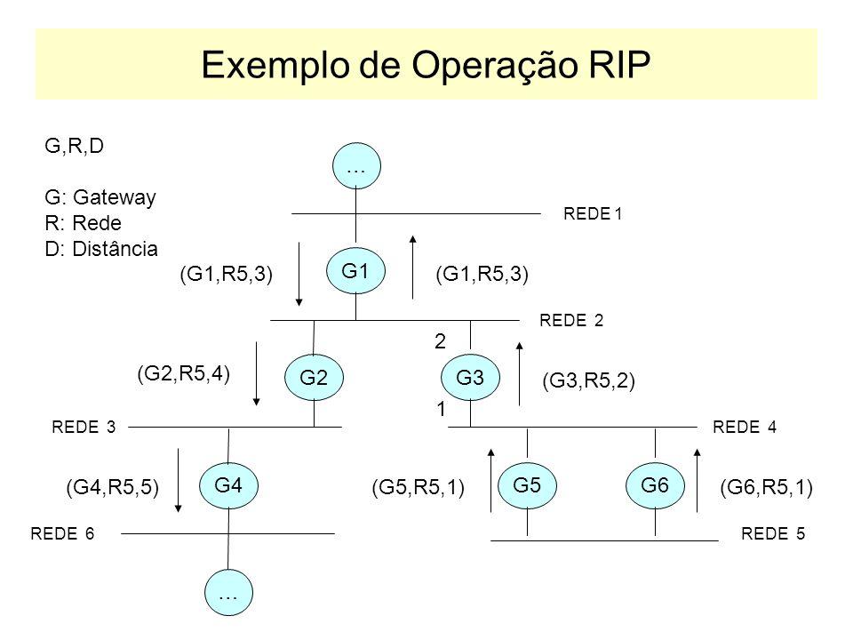 Exemplo de Operação RIP
