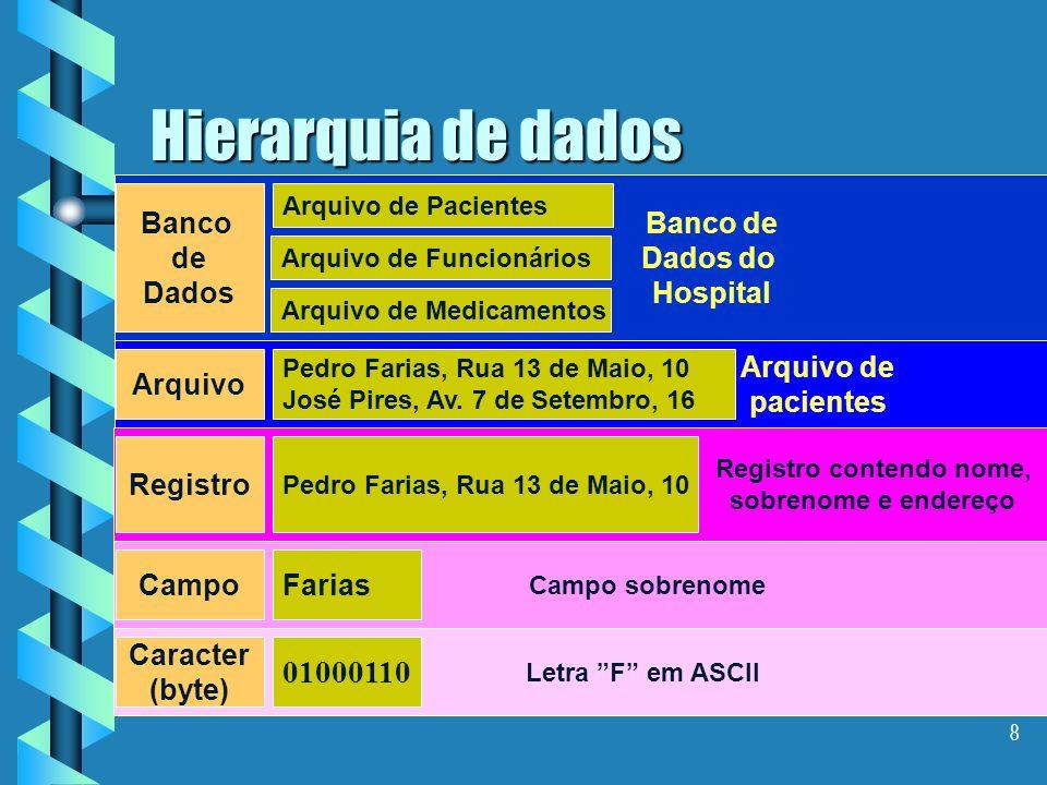 Hierarquia de dados 01000110 Banco de Dados Banco de Dados do Hospital