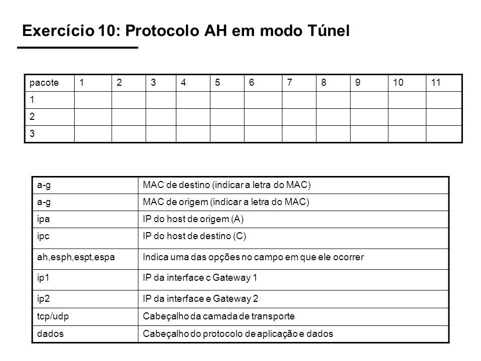 Exercício 10: Protocolo AH em modo Túnel