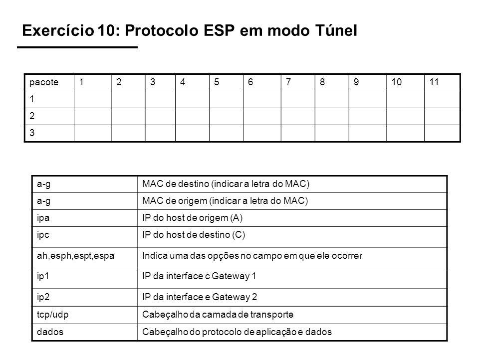 Exercício 10: Protocolo ESP em modo Túnel
