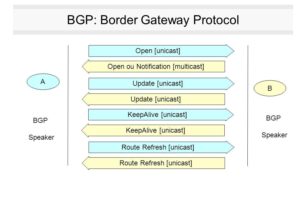 BGP: Border Gateway Protocol