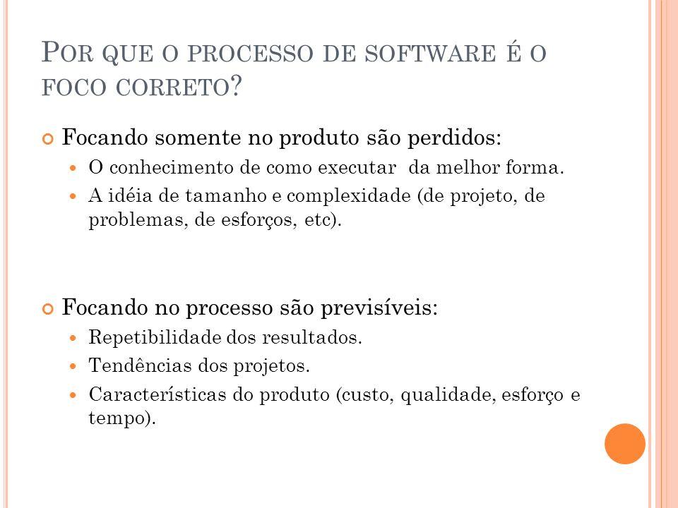 Por que o processo de software é o foco correto