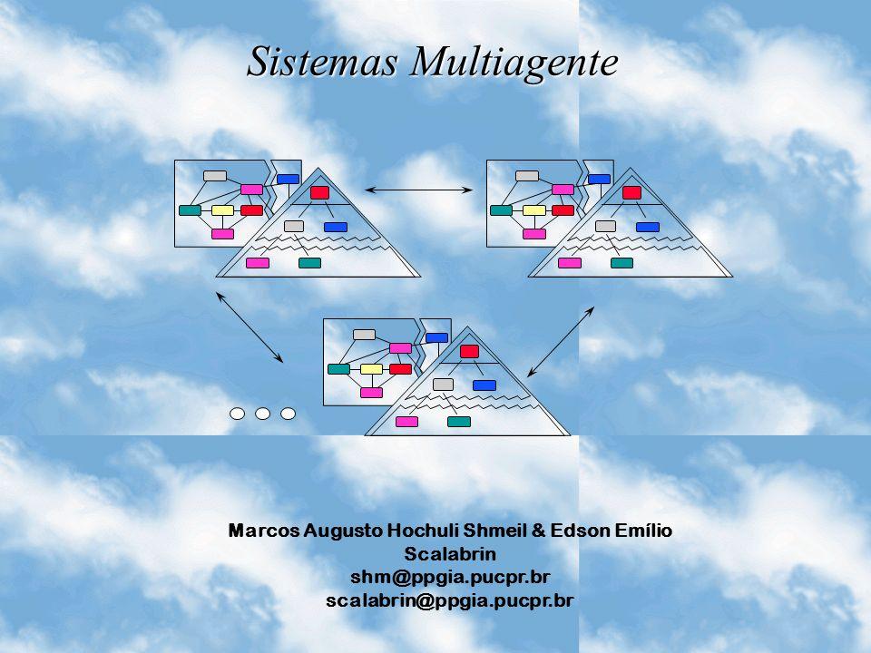 Marcos Augusto Hochuli Shmeil & Edson Emílio Scalabrin