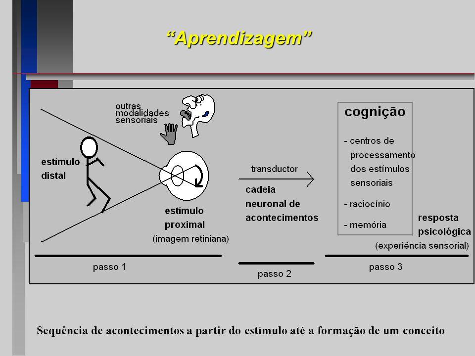 Aprendizagem Sequência de acontecimentos a partir do estímulo até a formação de um conceito