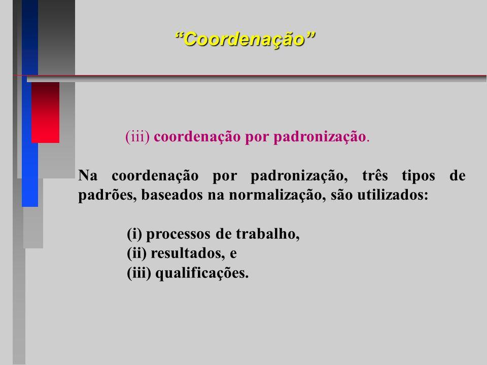 (iii) coordenação por padronização.