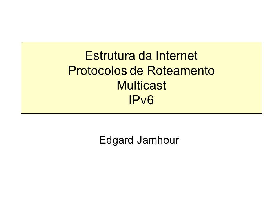 Estrutura da Internet Protocolos de Roteamento Multicast IPv6