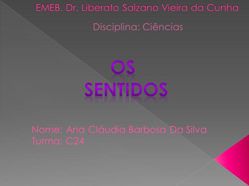 EMEB. Dr. Liberato Salzano Vieira da Cunha