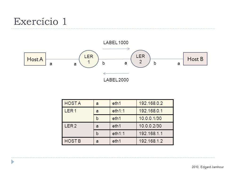 Exercício 1 Host A Host B LABEL 1000 LER1 LER2 a a b a b a LABEL 2000