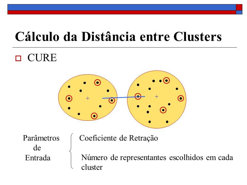 Cálculo da Distância entre Clusters