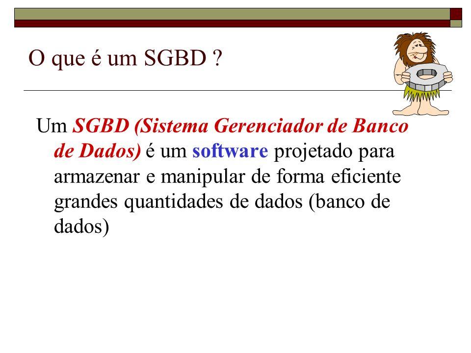O que é um SGBD