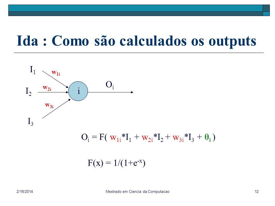Ida : Como são calculados os outputs