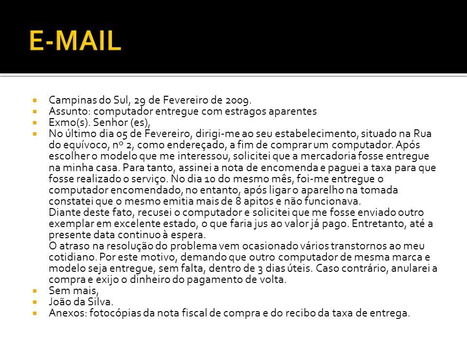 E-MAIL Campinas do Sul, 29 de Fevereiro de 2009.