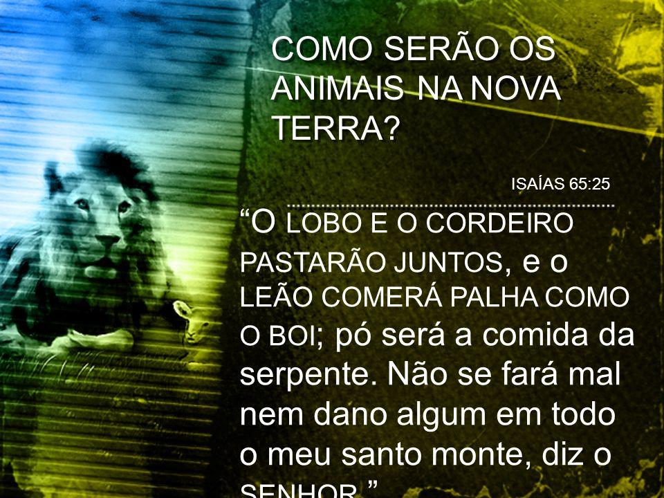 COMO SERÃO OS ANIMAIS NA NOVA TERRA