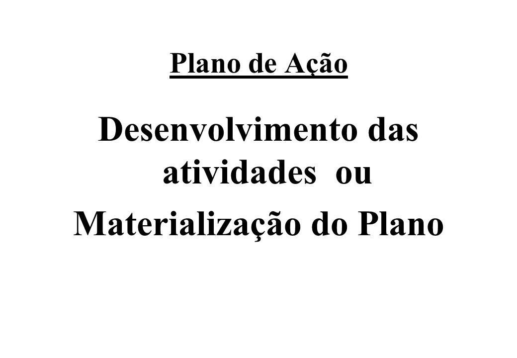 Desenvolvimento das atividades ou Materialização do Plano