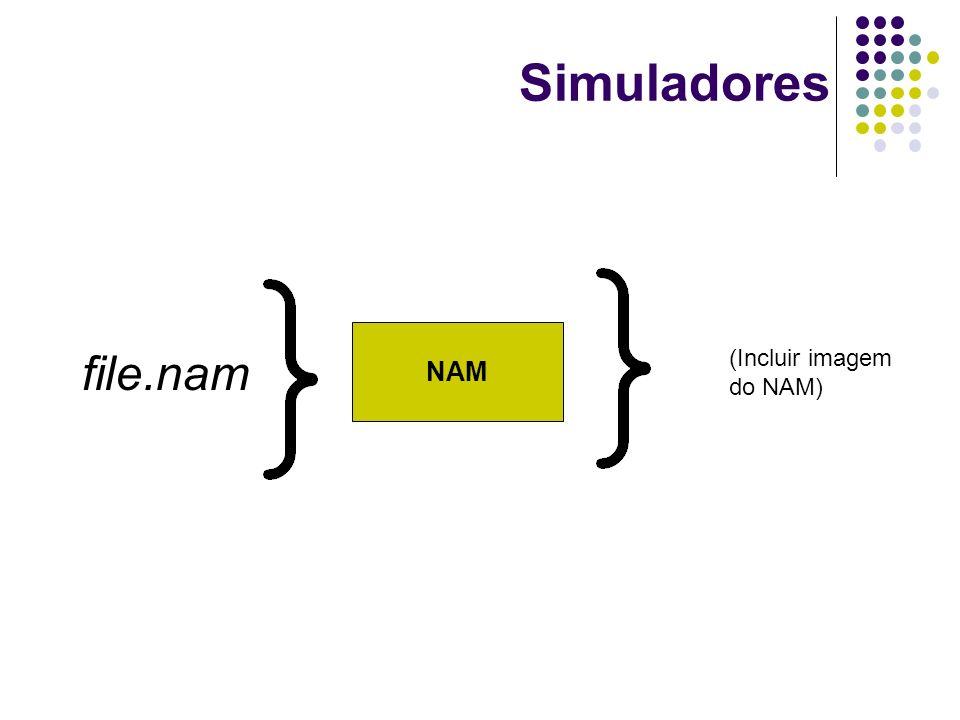 Simuladores NAM file.nam (Incluir imagem do NAM)
