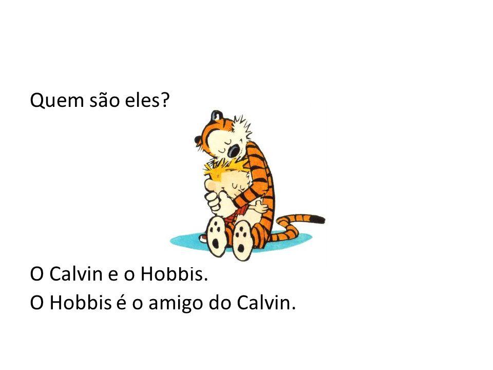 Quem são eles O Calvin e o Hobbis. O Hobbis é o amigo do Calvin.