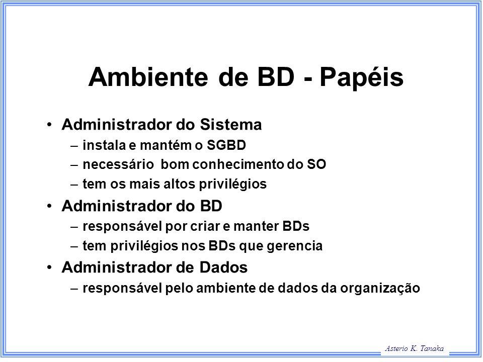 Ambiente de BD - Papéis Administrador do Sistema Administrador do BD