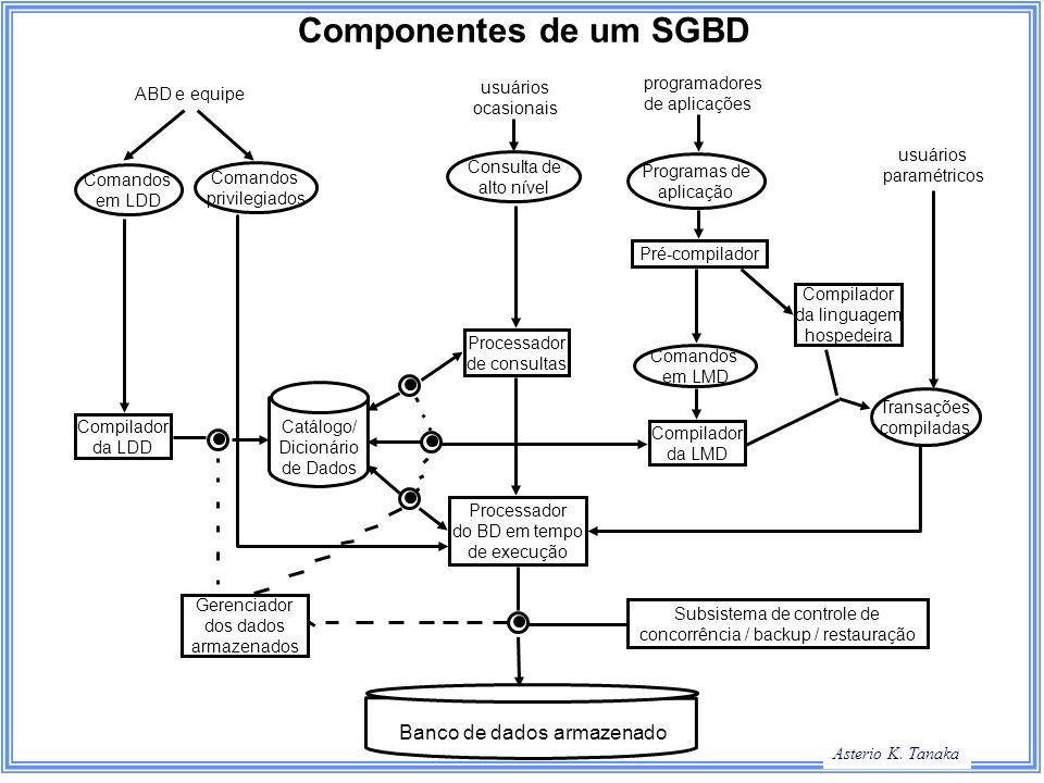 Componentes de um SGBD Banco de dados armazenado programadores
