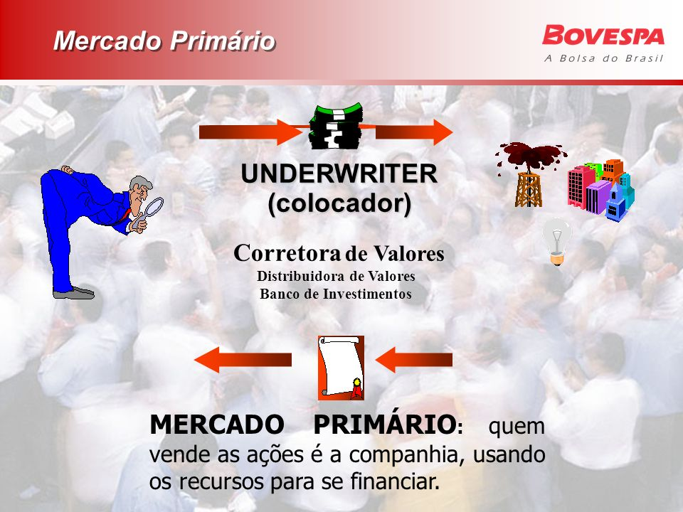 Distribuidora de Valores Banco de Investimentos