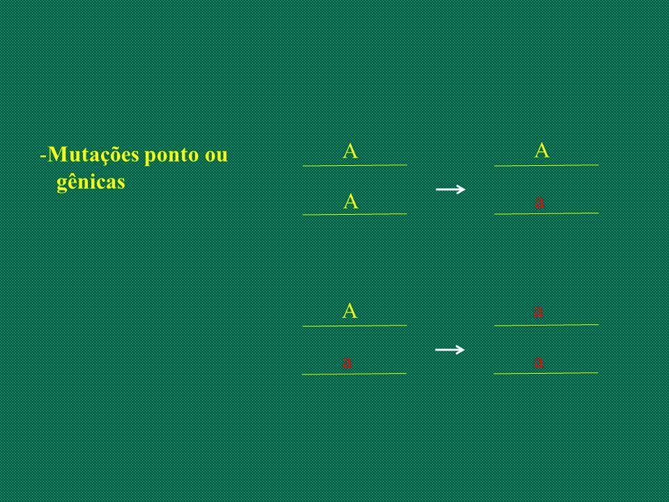Mutações ponto ou gênicas A A A a A a a a