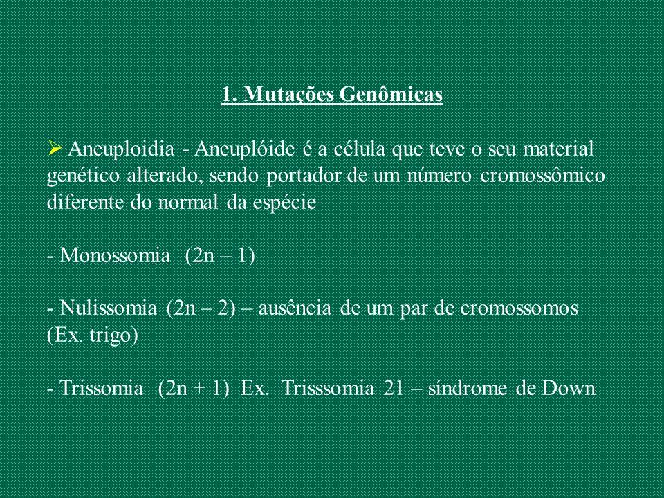 1. Mutações Genômicas