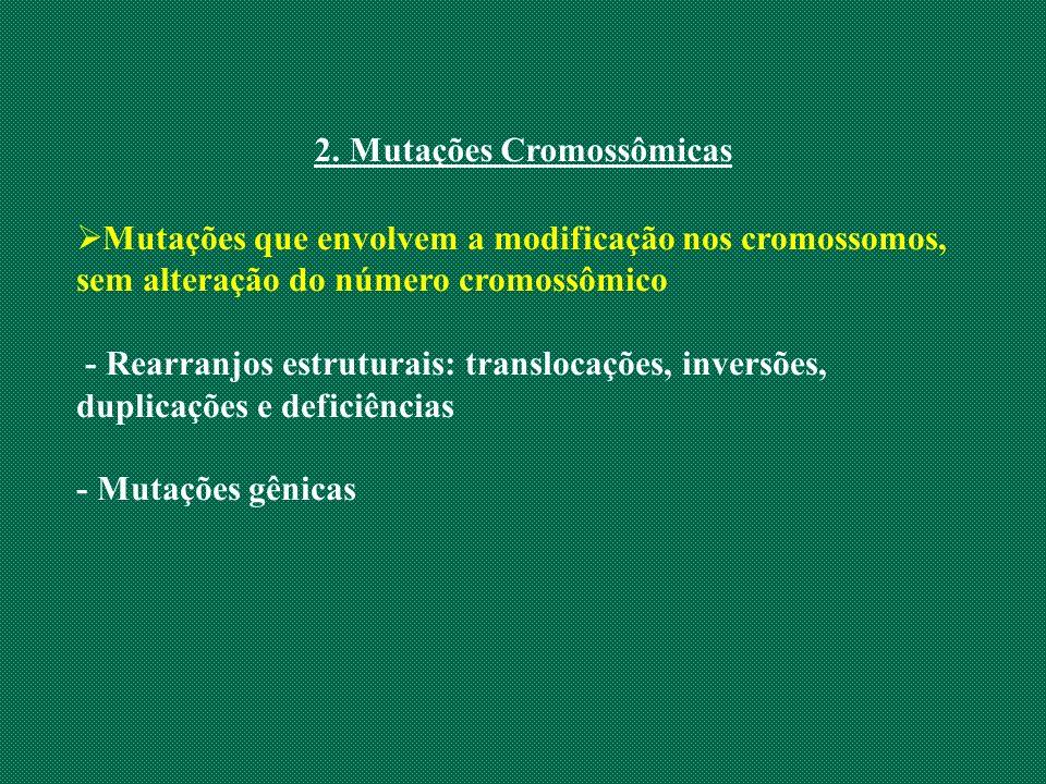2. Mutações Cromossômicas