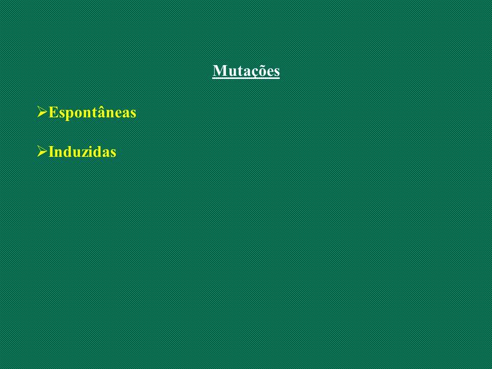 Mutações Espontâneas Induzidas