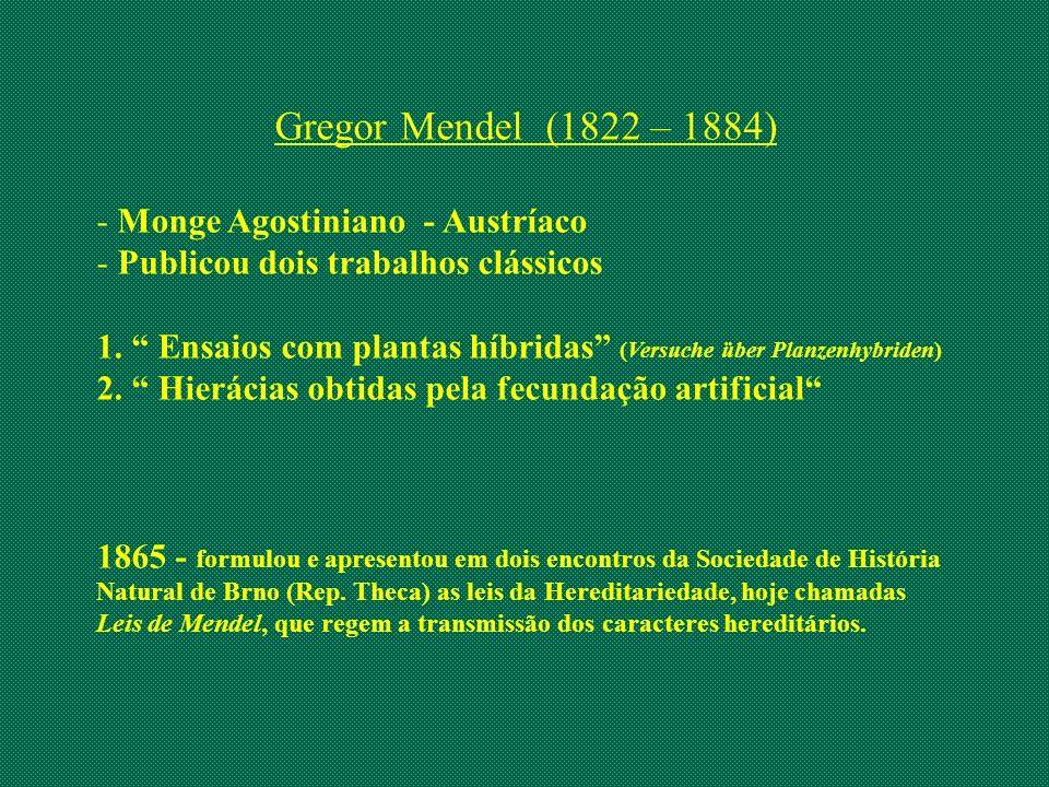 Gregor Mendel (1822 – 1884) Monge Agostiniano - Austríaco