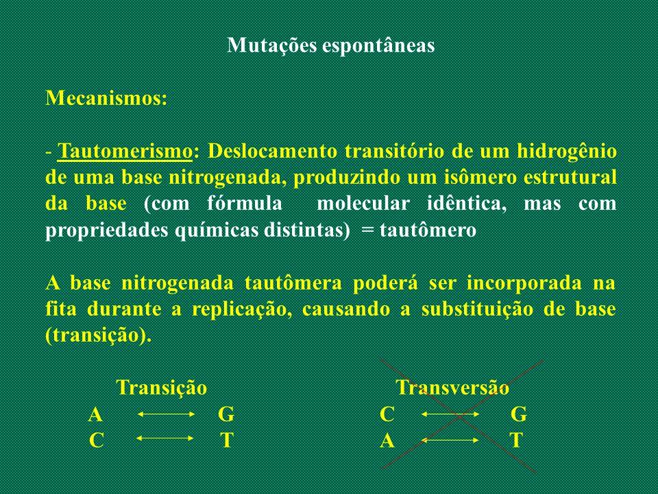 Mutações espontâneas Mecanismos:
