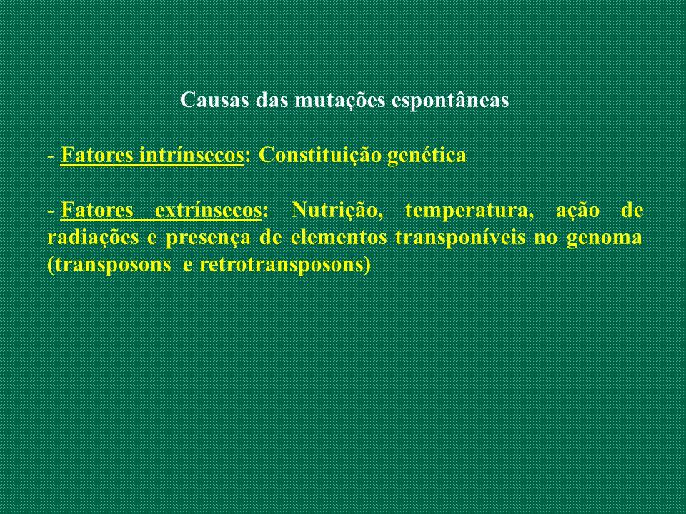 Causas das mutações espontâneas