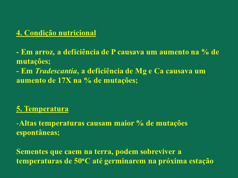 4. Condição nutricional - Em arroz, a deficiência de P causava um aumento na % de mutações;