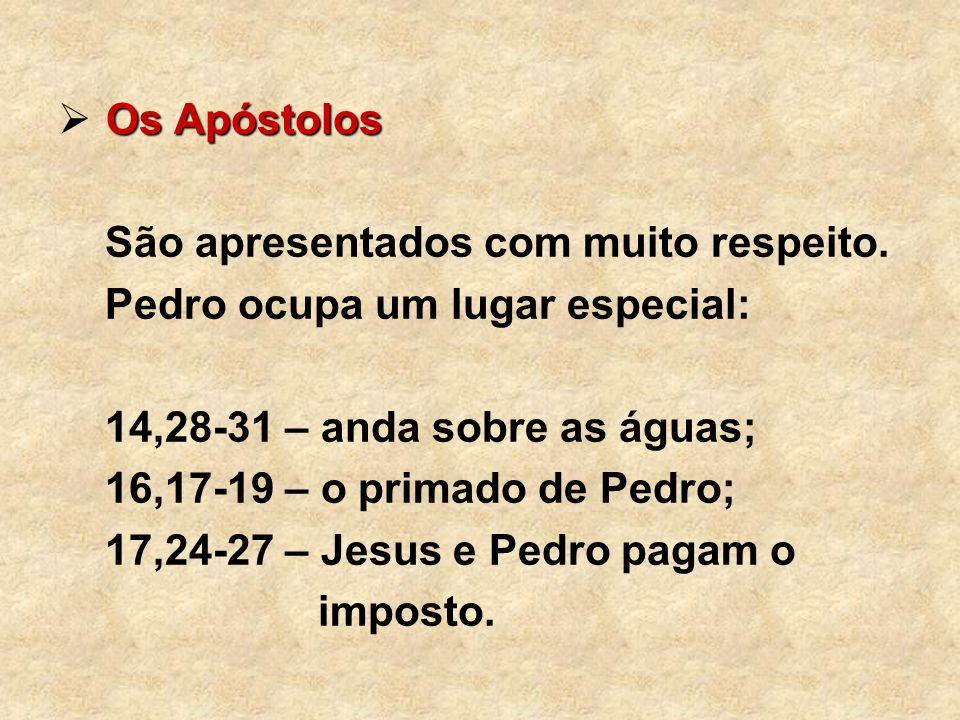 Os Apóstolos São apresentados com muito respeito. Pedro ocupa um lugar especial: 14,28-31 – anda sobre as águas;