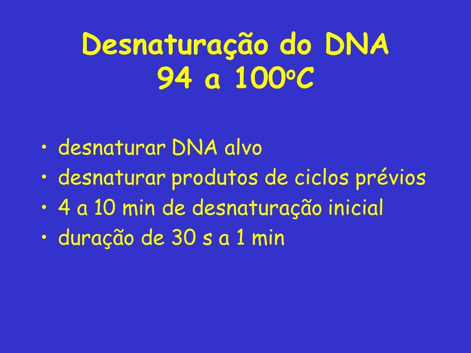 Desnaturação do DNA 94 a 100oC