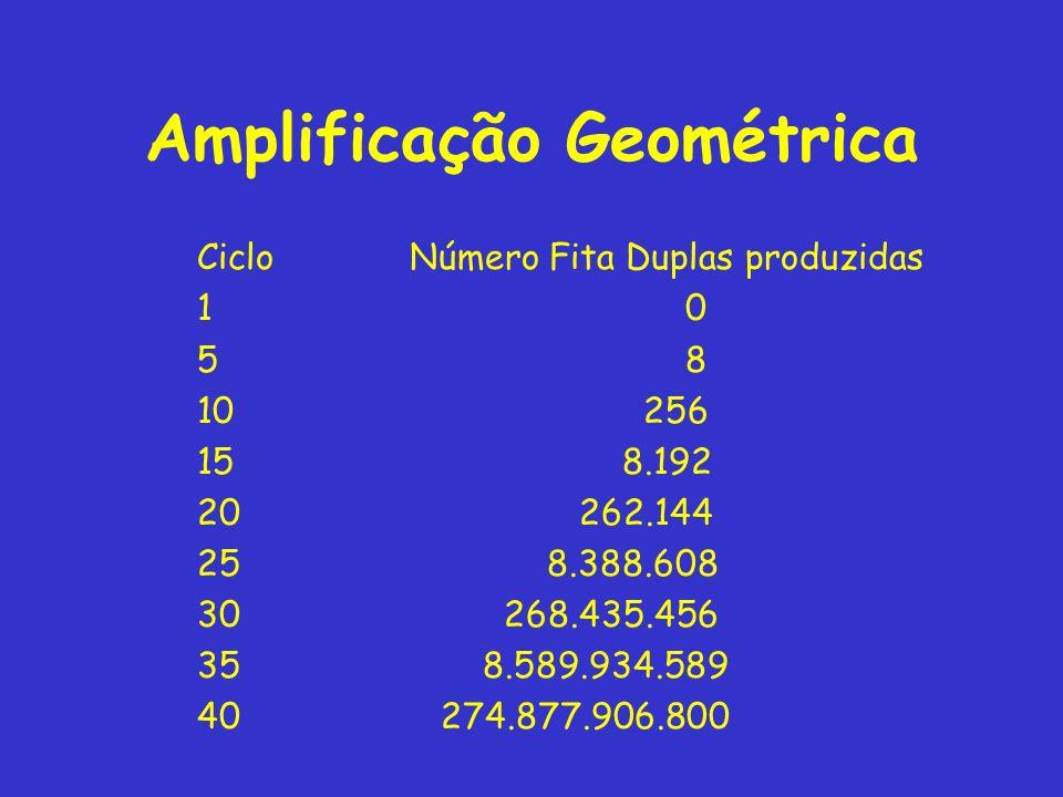Amplificação Geométrica